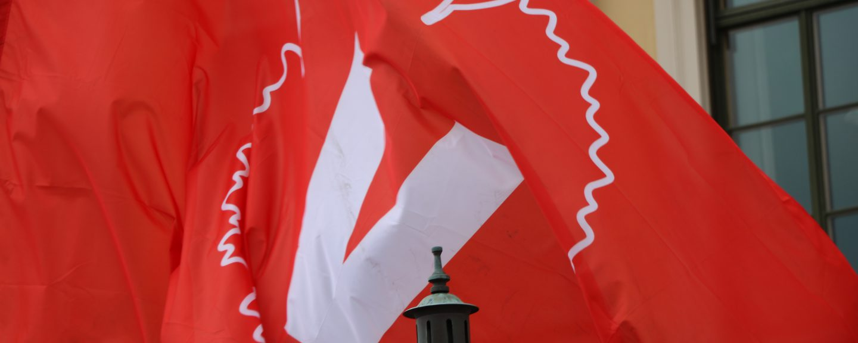 Vänsterpartiets röda flagga med loggan i mitten